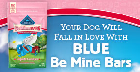 Blue Buffalo - Be Mine Bars!