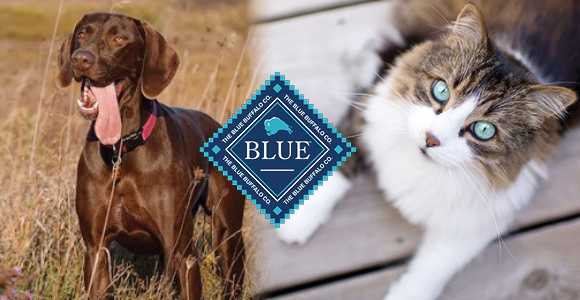 Blue Buffalo Dog and Cat Food