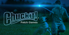 Chuck-It! Lightplay Fetch Games