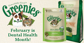 Greenies - February is Dental Health Month!