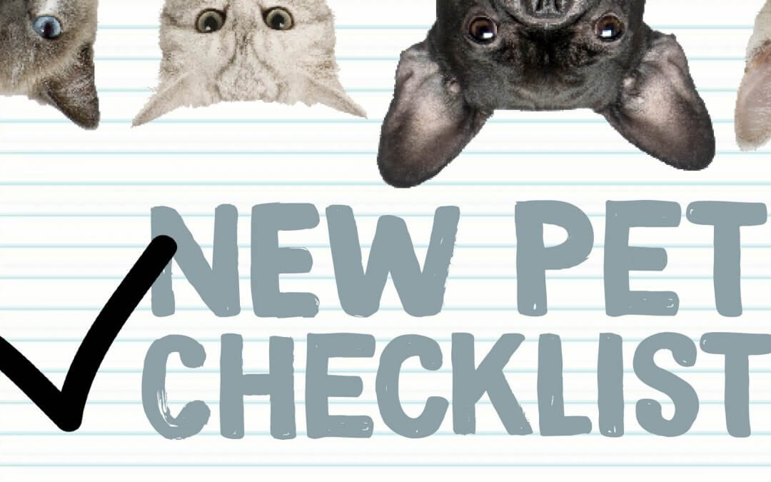New Pet Tips & Checklist