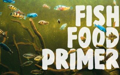 Fish Food Primer