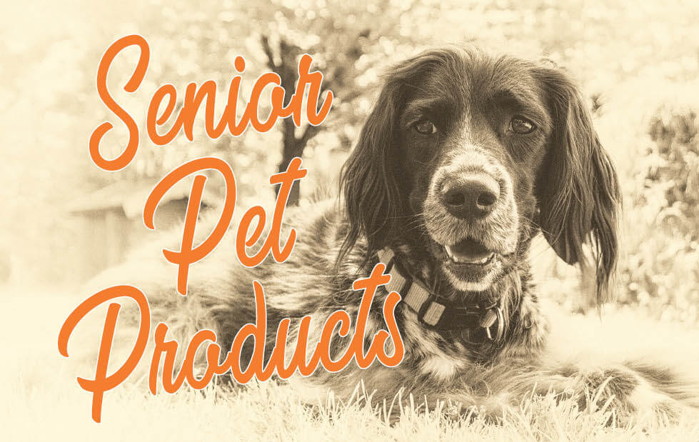 Supporting Vitality in Senior Pets