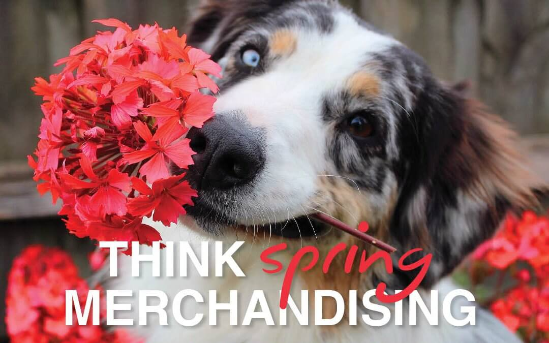Time for Spring Merchandising