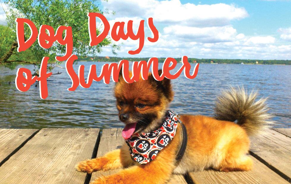 Summer Merchandising Heats Up