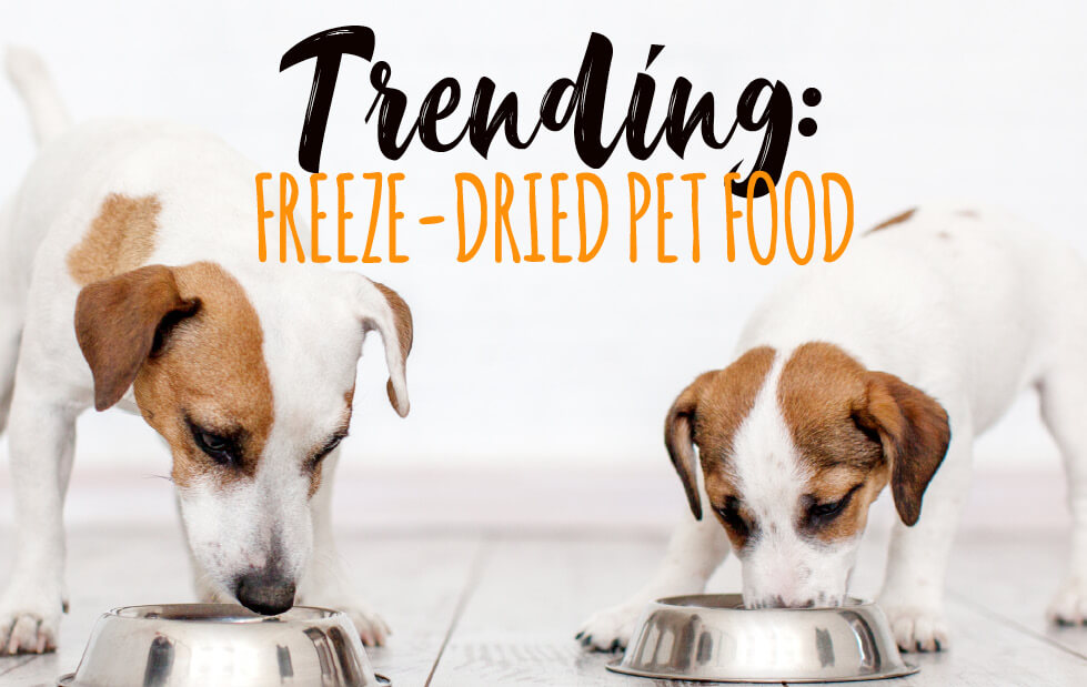 Trending: Freeze-Dried Pet Food