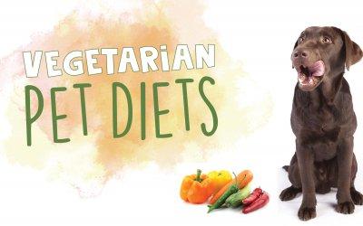 Vegetarian Pet Diets
