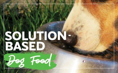Solution-Based Dog Food