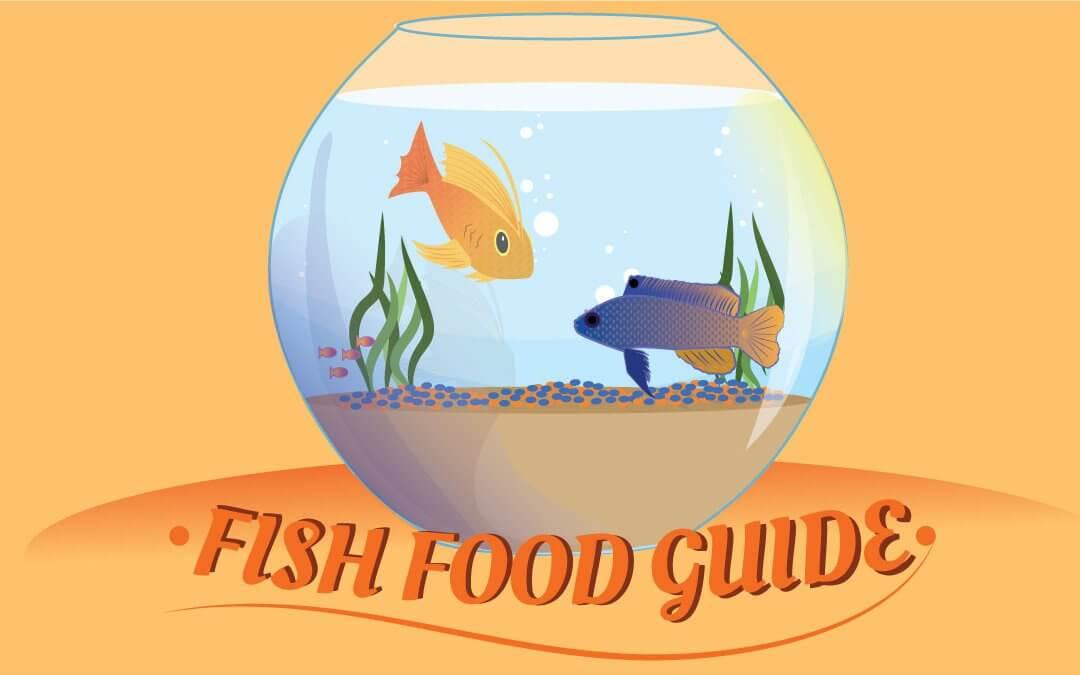 Fish Food Guide