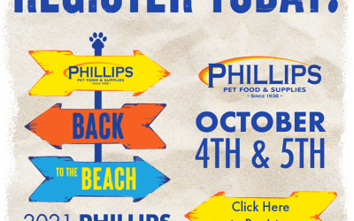 Join Us at the 2021 Phillips Buying Show – Back to the Beach!